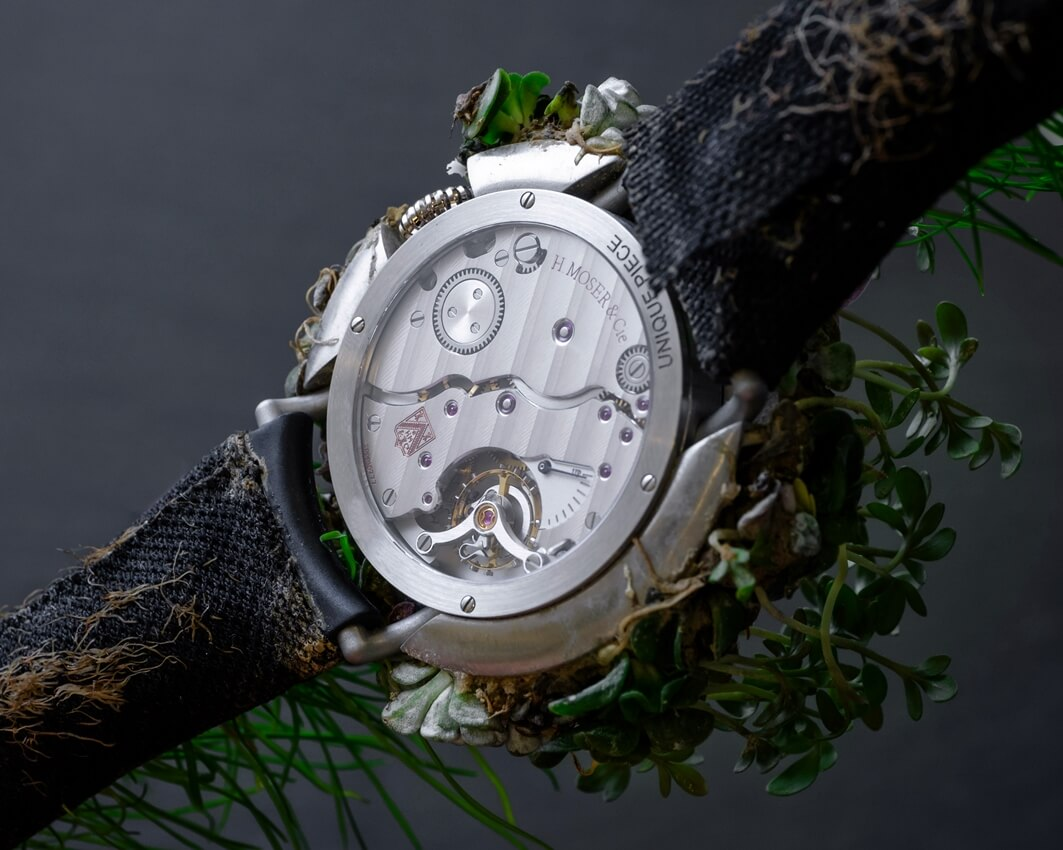 H. Moser & Cie Nature Watch